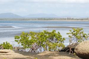 View across Bowling Green Bay. Photo Malcolm Tattersall.