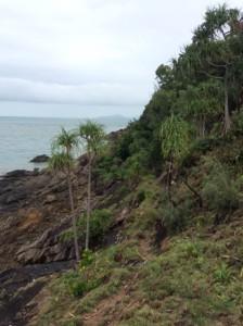 Coastal scenery along the track. Photo Su Mijic.