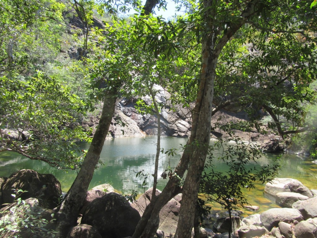 Tranquillity of Zoe Falls pool once the human swimmers had departed. Photo Liz Downes.