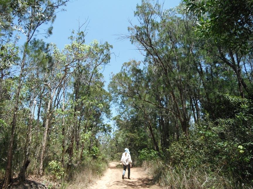 Track. Bluewater Range Photo DS