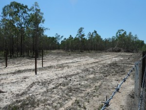 Unregulated and legal destruction of MG habitat Photo DS