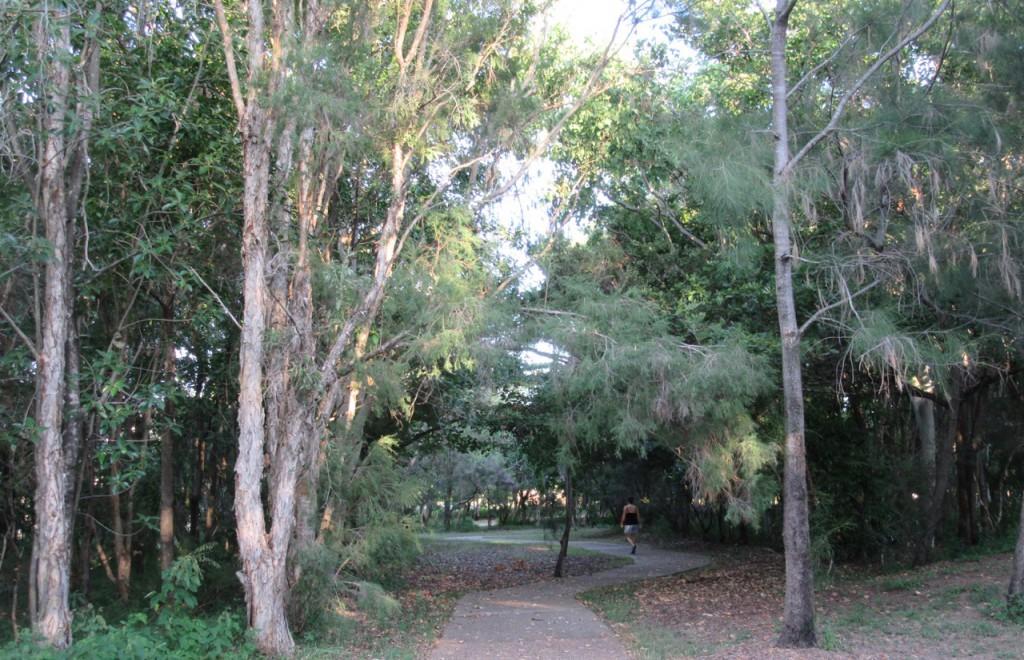 Walking through the Environment Park