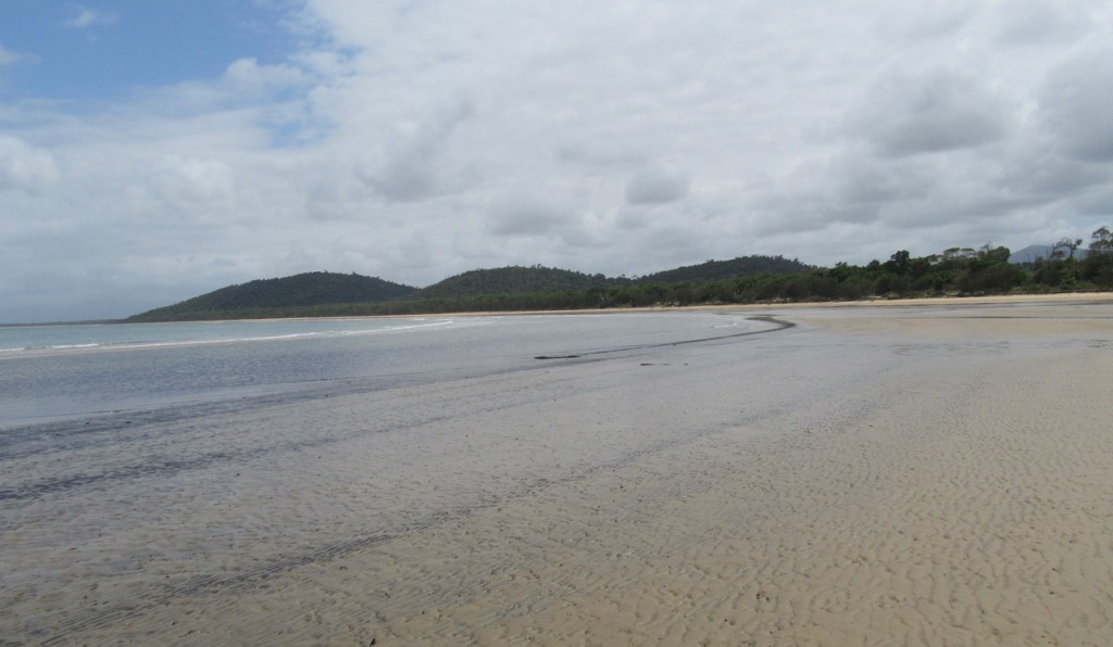 Still wild - the beach at Kennedy Bay stretches  south to the Hull River