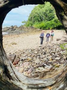 A circular view, Turtle Beach. Photo Ishara U.