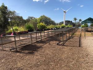 New nursery behind the wind turbine.