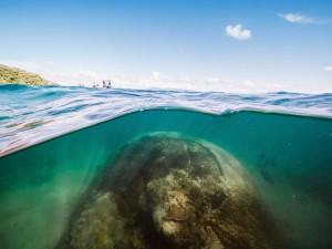 Photo courtesy of Woody Spark. Reef Ecologic.